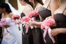 Carnation Bridesmaids